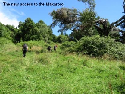 Makaroro